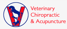 WINNIE DRESCHEL  Veterinary practice for chiropratic & acupuncture